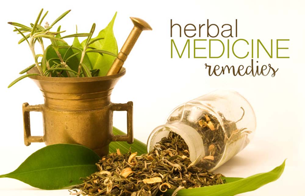 Image result for Herb Medicine